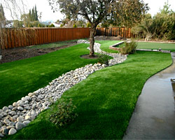 Livermore Synthetic Grass