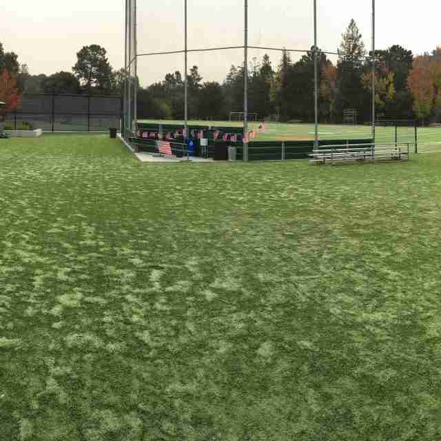 Project: Global Syn-Turf at Pinewood Private School in Los Altos Hills