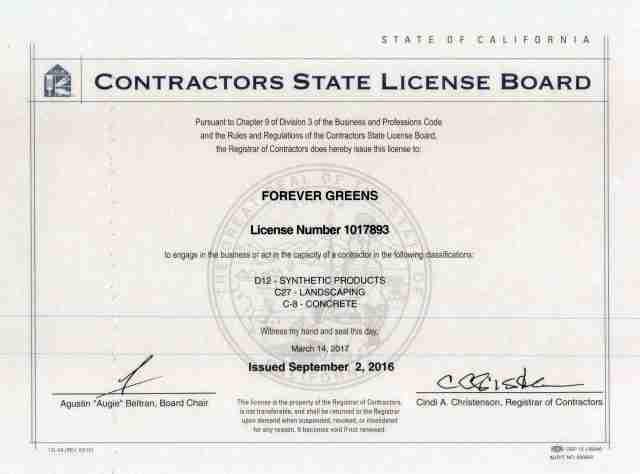 License Number 1017893
