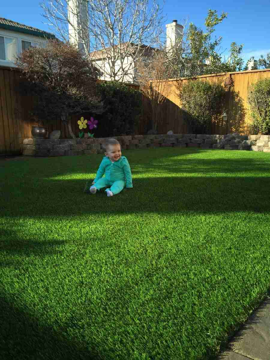 Livermore Ca Backyard Synthetic Grass